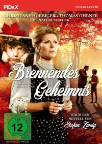 Brennendes Geheimnis  Cover