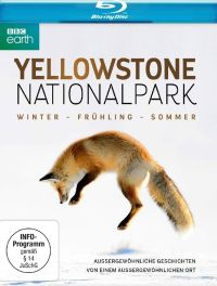 DVD Yellowstone Nationalpark - Winter - Frühling - Sommer (BBC Earth)